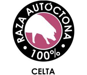 porco-celta