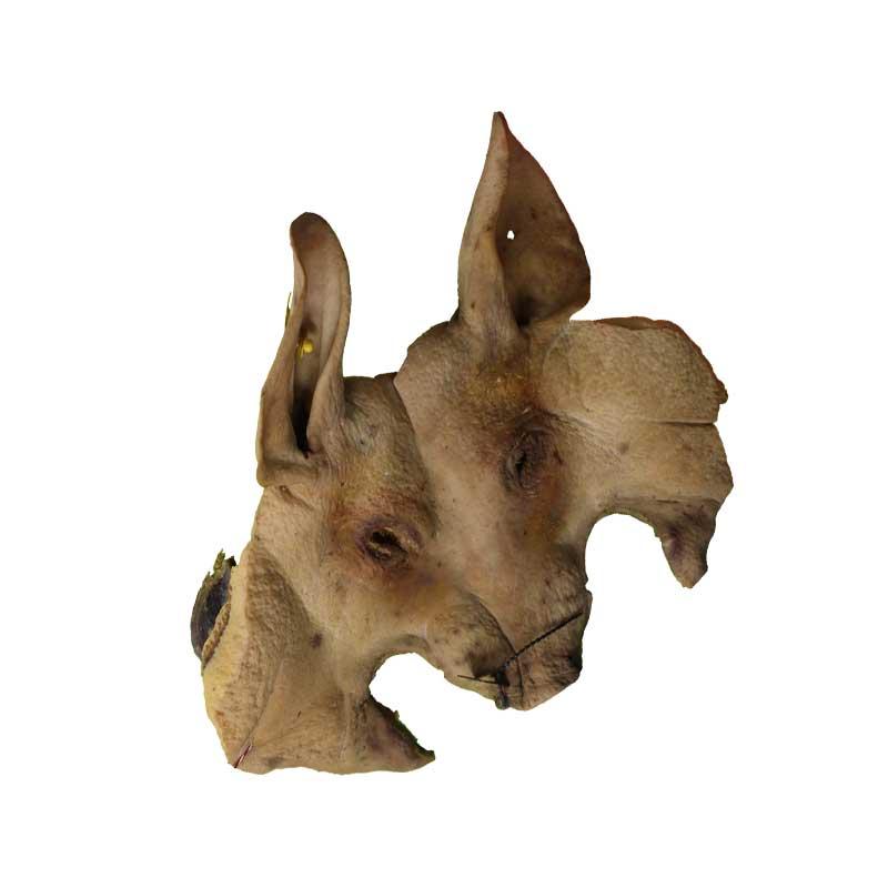 cabeza-porco-celta